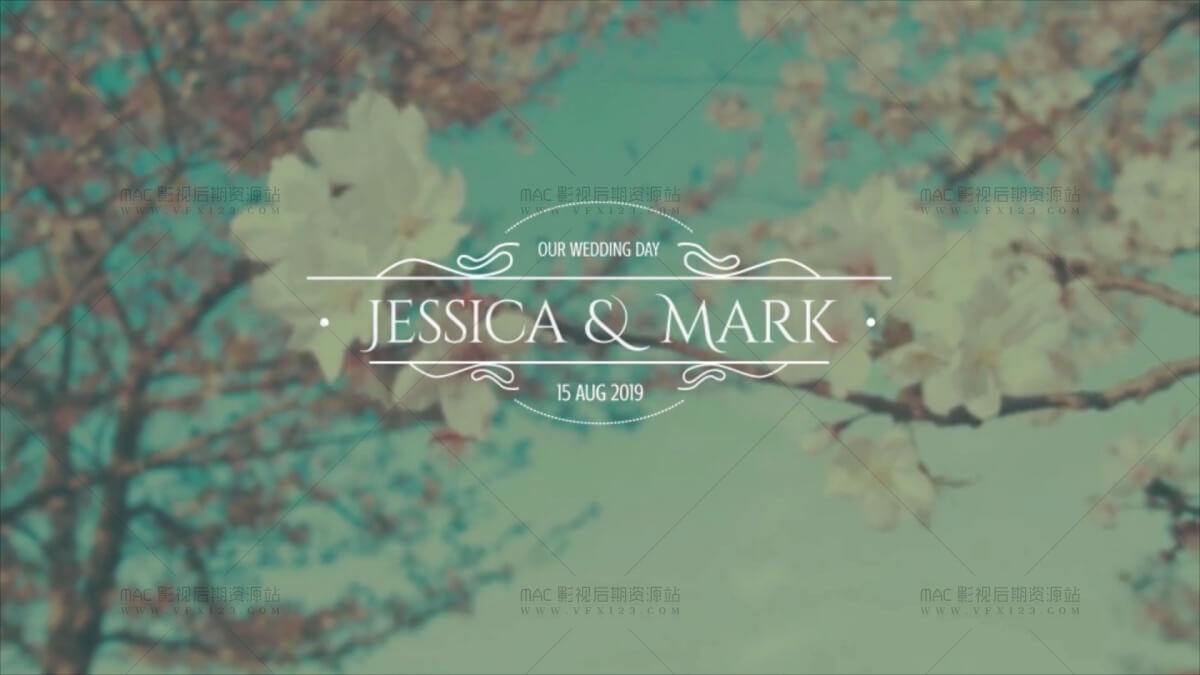 婚礼文字标题动画 天使 花纹生长 10组 AE模板 Wedding Titles V1