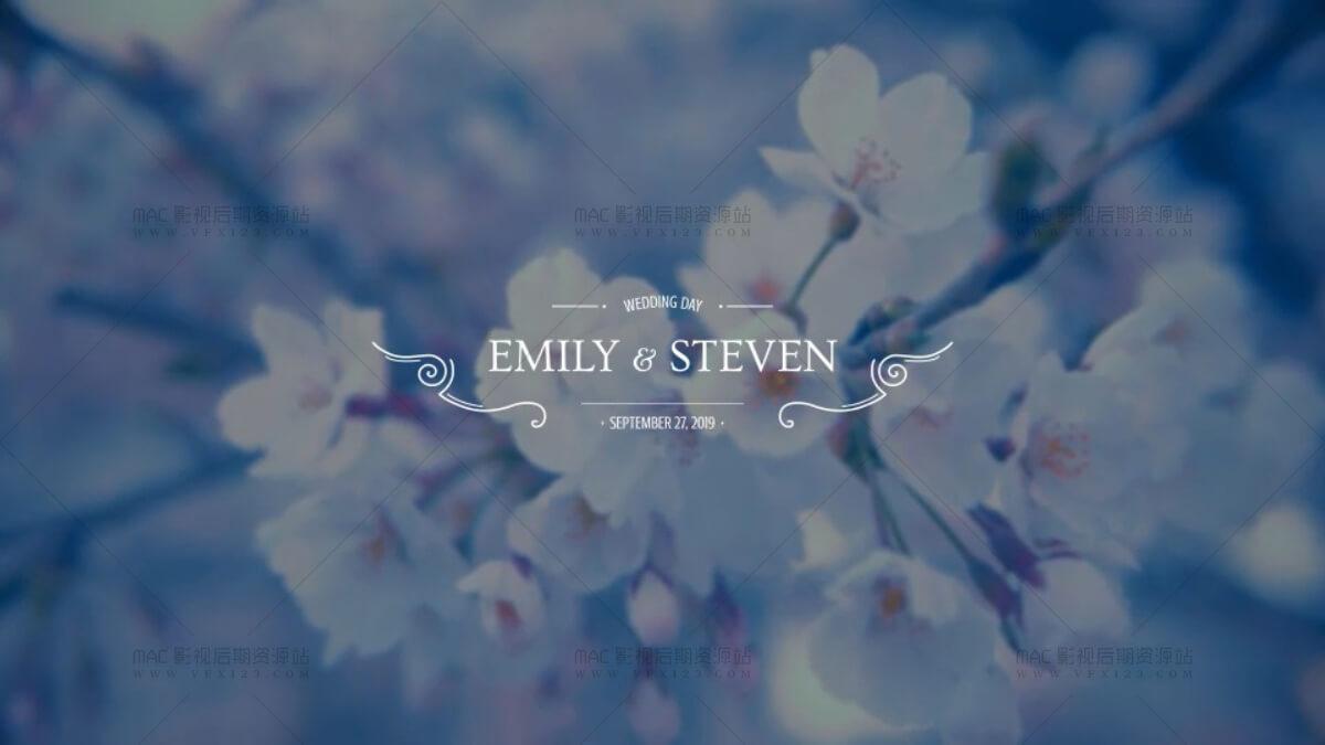 婚礼文字标题动画 花纹生长 10组 AE模板 Wedding Titles V2