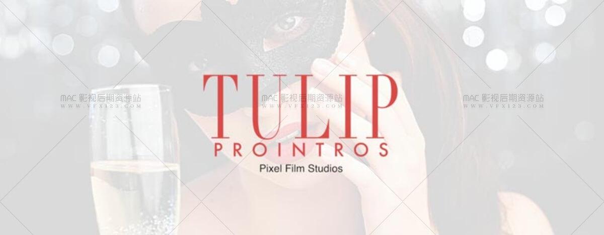 Pixel Film Studios ProIntro 2
