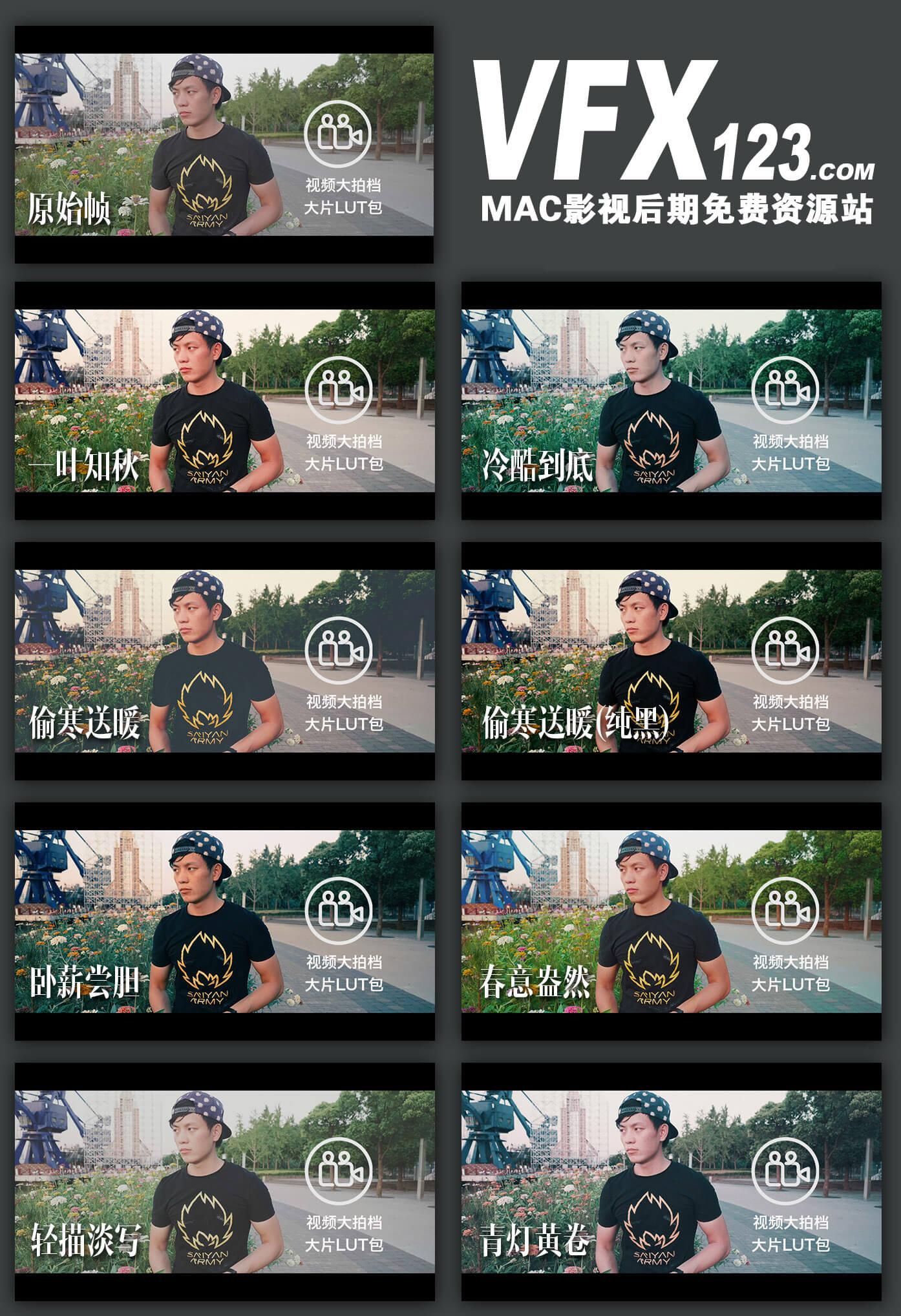 大片LUTS预设包 Vlog常用LUTS预设 FCPX调色插件