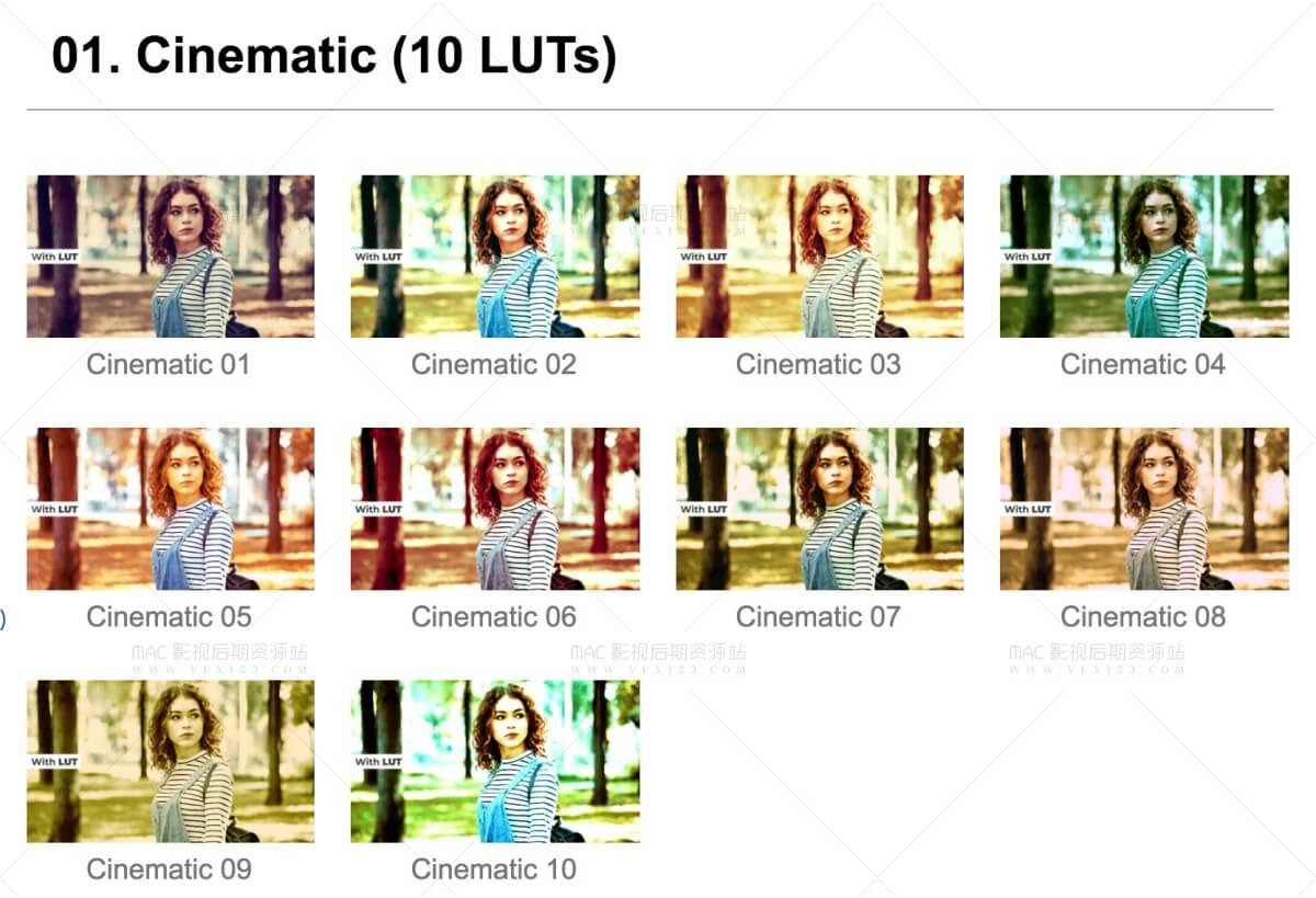 120+LUTS精品预设合集 7分类电影手机短视频旧电影婚礼MV黑白等 | MAC影视后期资源站
