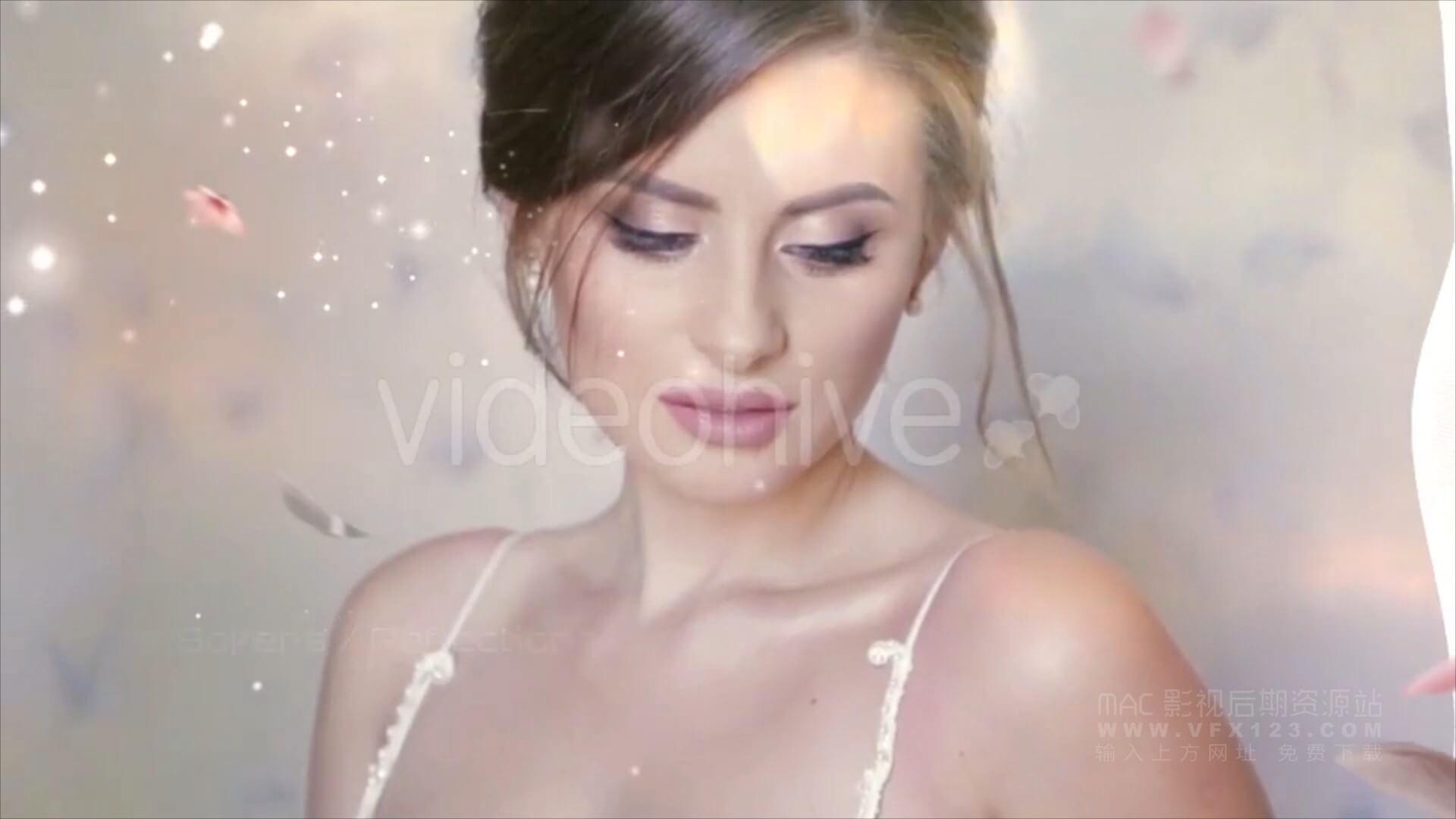 婚礼前景素材 36个玫瑰花瓣婚纱漏光粒子炫光闪光转场标题