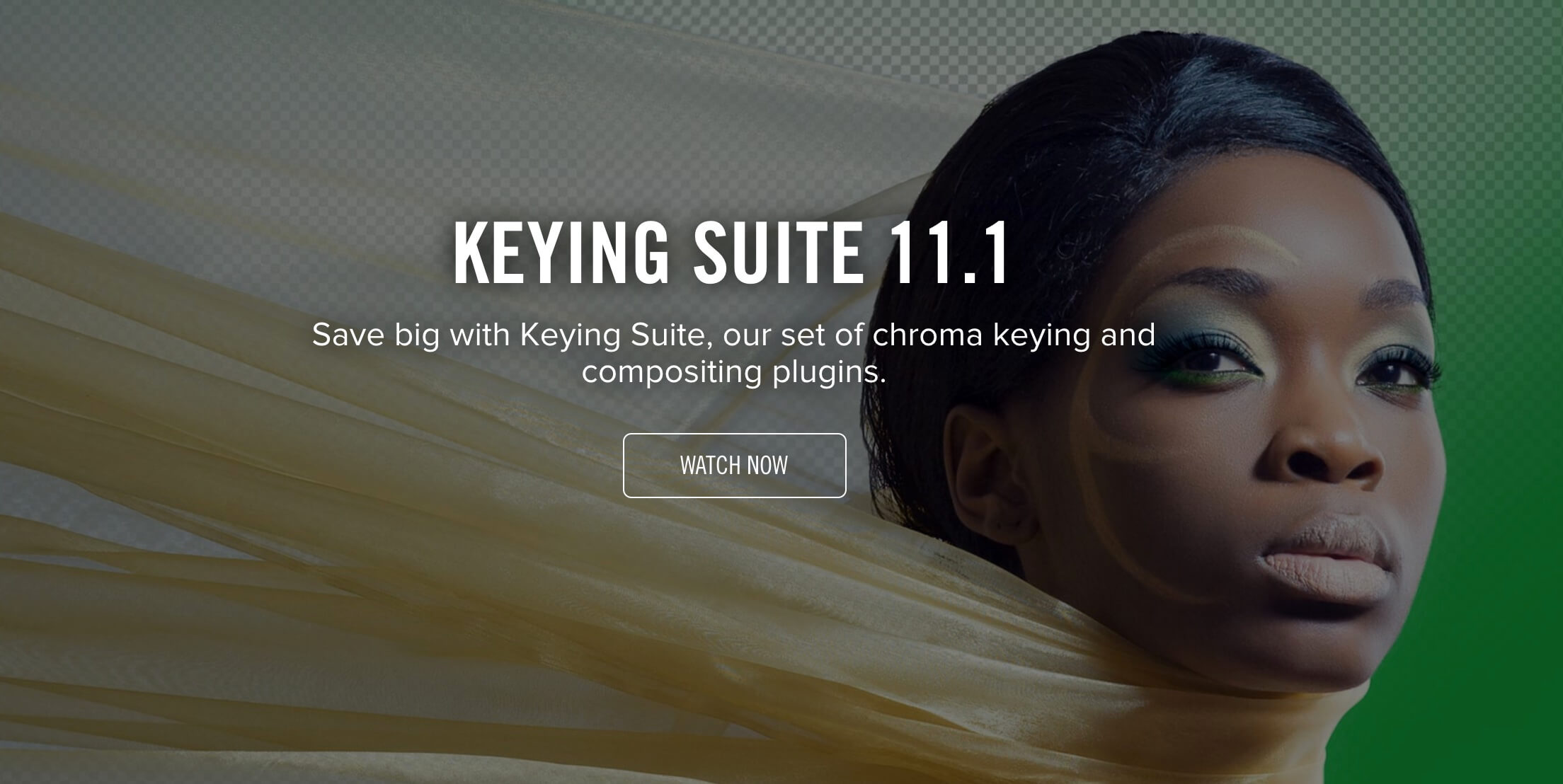 Red Giant Keying Suite 11.1.10 红巨人抠像键控插件套装 Win/Mac