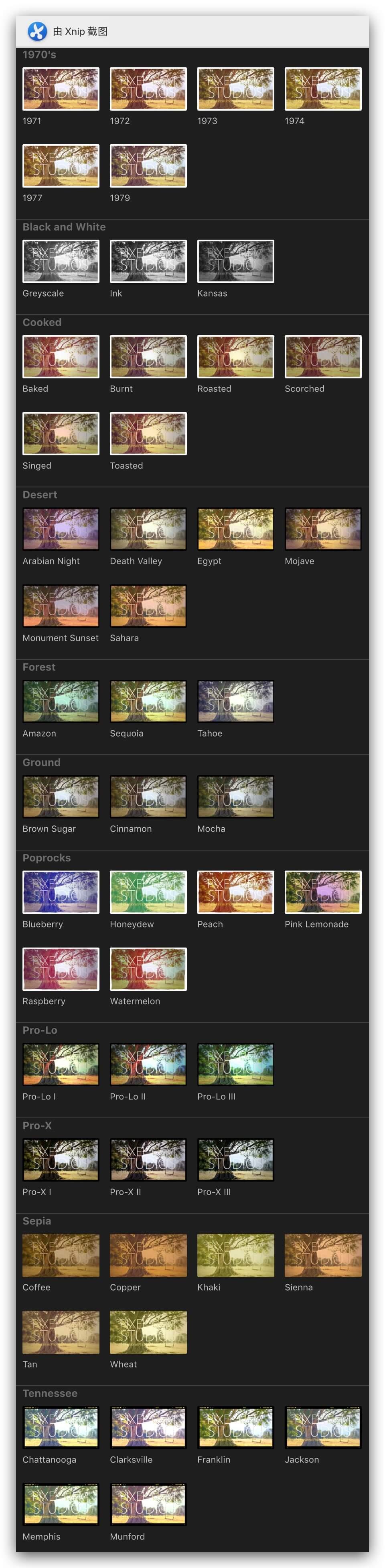 fcpx调色插件 50种流行复古时髦照片调色预设 PROTO Pixel Film Studios