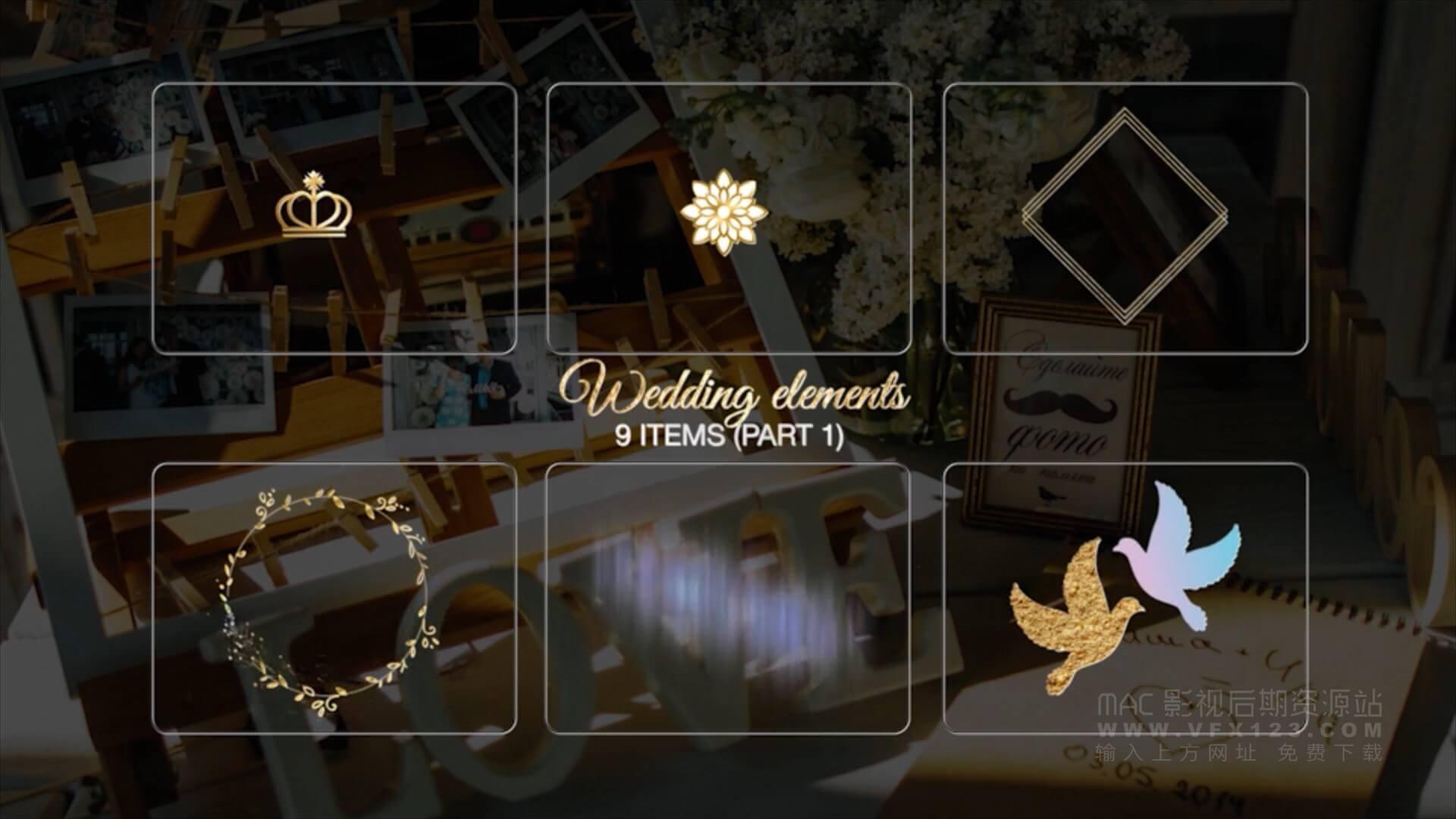 Ae模板 婚礼视频标题制作素材包 Luxory Wedding Title Kit