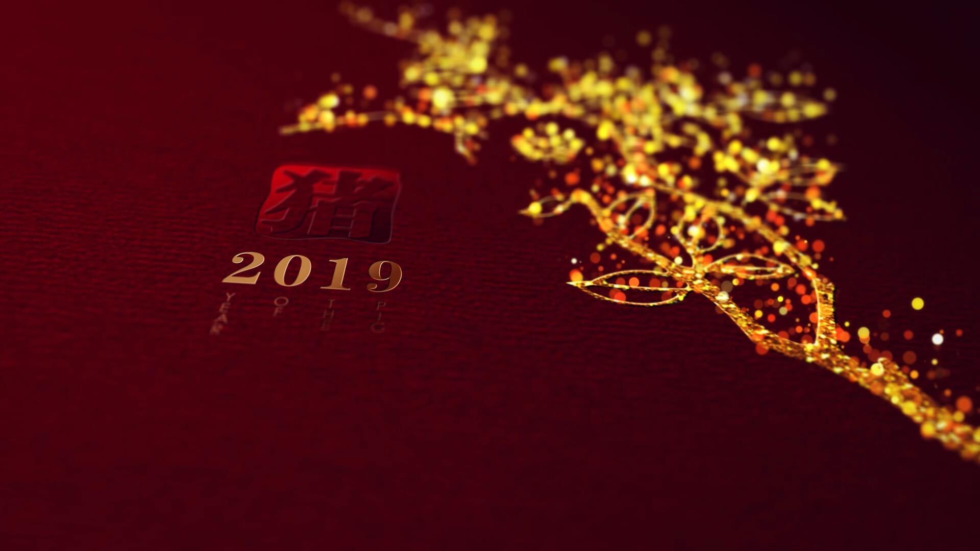 AE模板 喜庆中国风2019猪年新年片头片尾 喜庆金色花纹 春节联欢晚会开场
