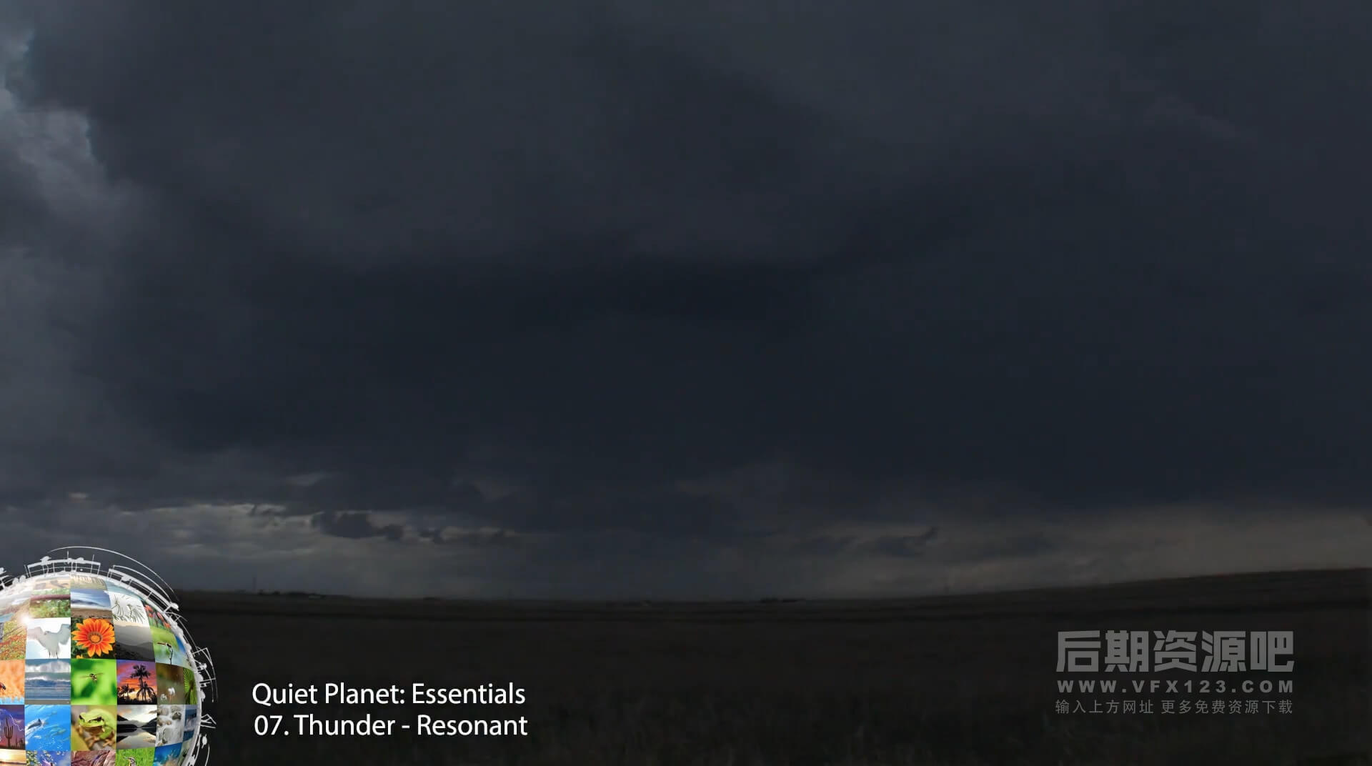 音效素材 大自然环境音效风雨雷昆虫海浪森林沙漠草原落叶峡谷 NATURE ESSENTIALS