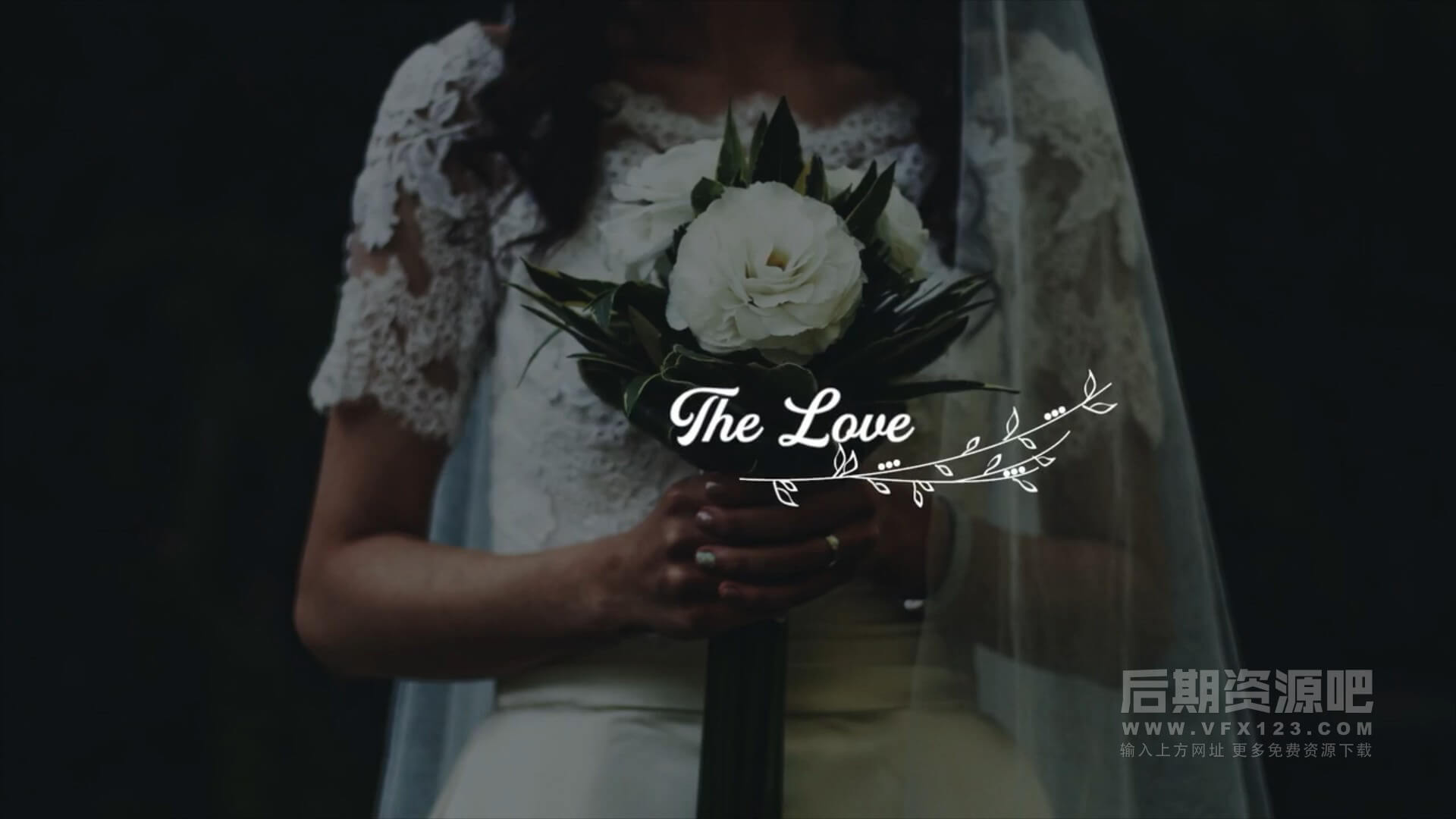 Fcpx标题插件 5组浪漫花纹婚礼人名日期MV标题模板 Wedding titles