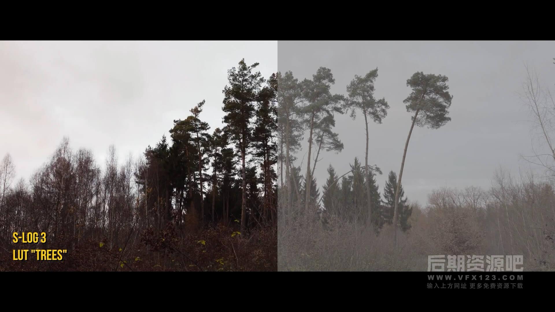 LUTs预设 7个秋季风景旅拍常用色彩还原调色预设 Autumn LUT Pack