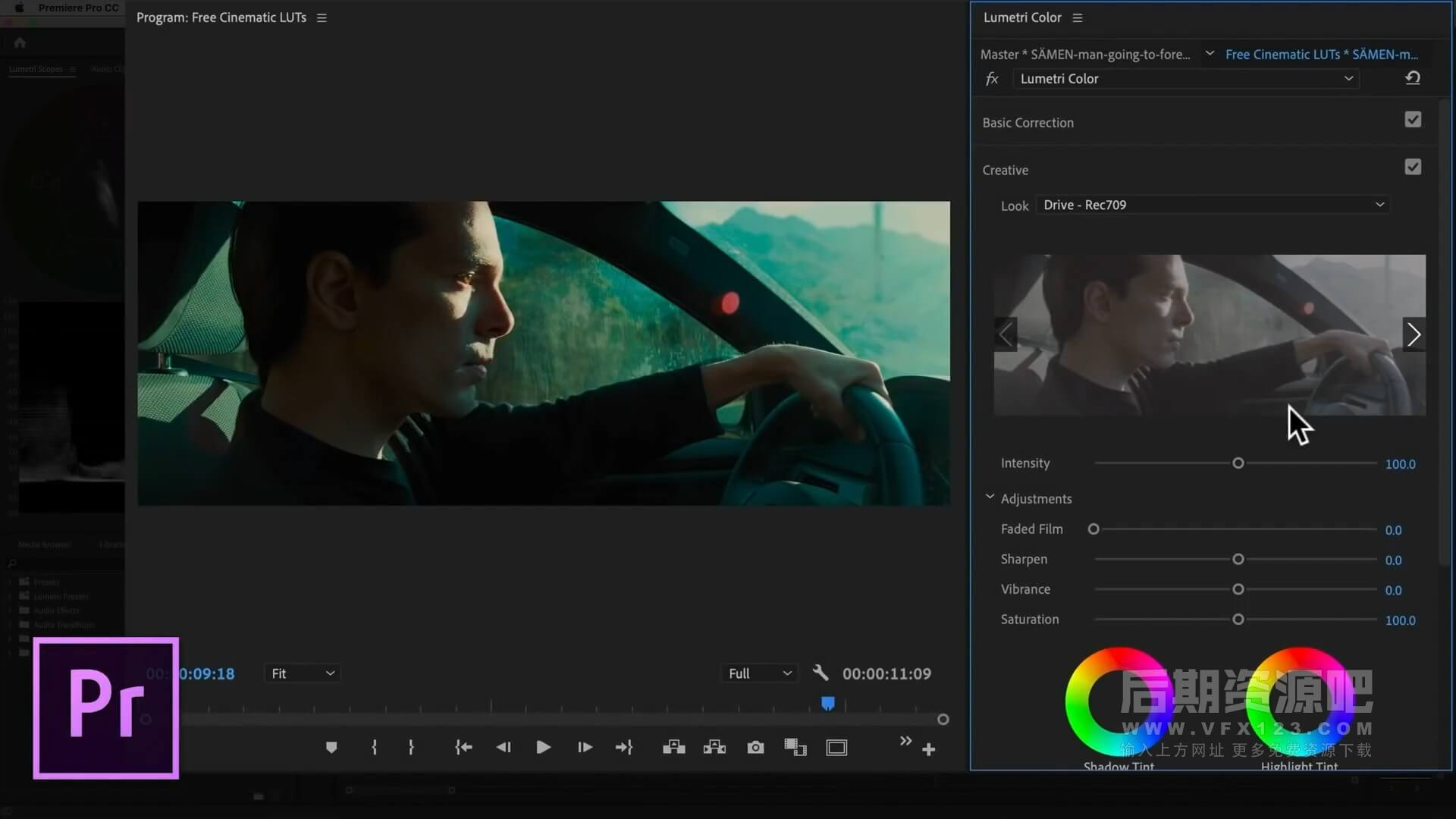 LUTs预设 精典好莱坞电影调色预设 含LUTS加载使用教程参考
