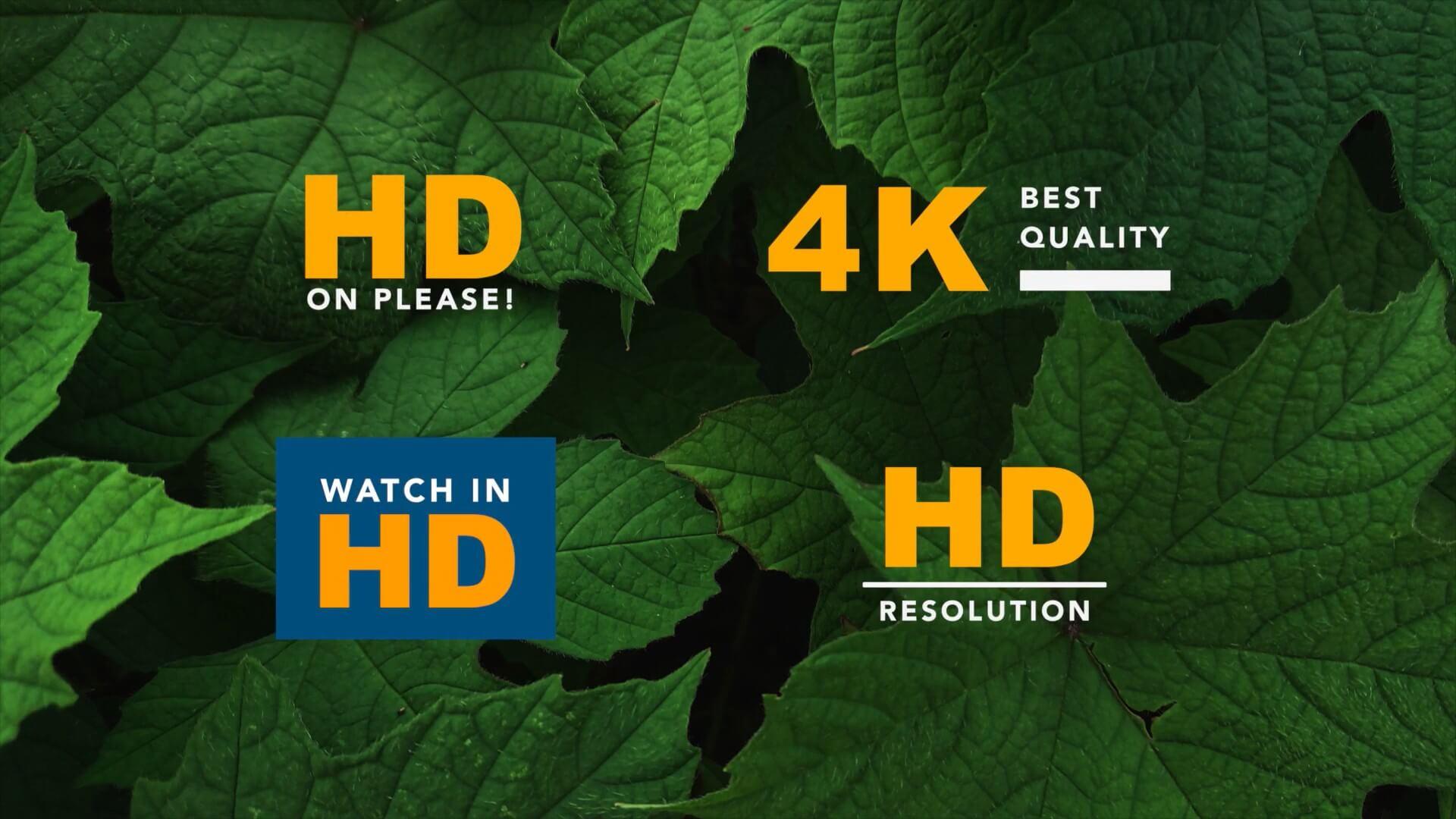 fcpx标题插件 4K分辨率标识HD角标动画 免费下载