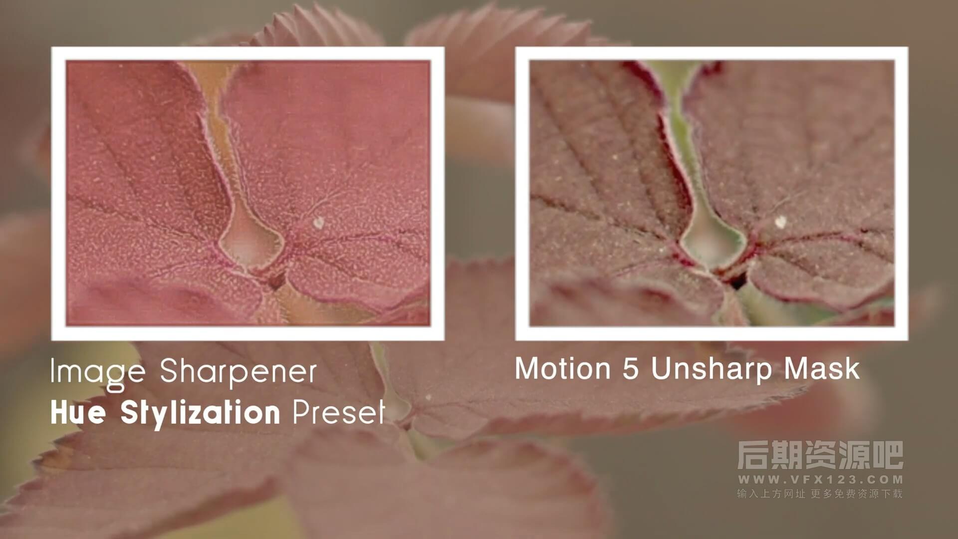 fcpx插件 视频图像锐化工具画面清晰度增强插件 Image Sharpener 2