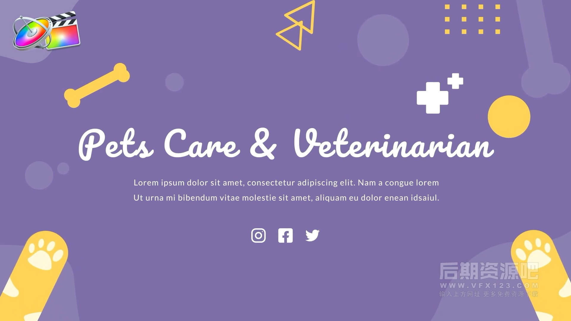 fcpx插件 12组宠物场景卡通动画 可自由组合 Pets Care and Veterinarian