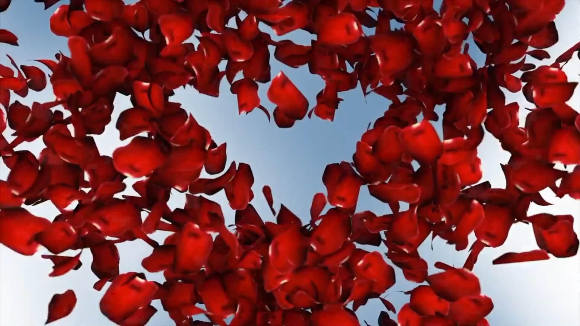 fcpx插件 玫瑰花瓣散落动画徽标LOGO展示片头模板 LOVE LOGO