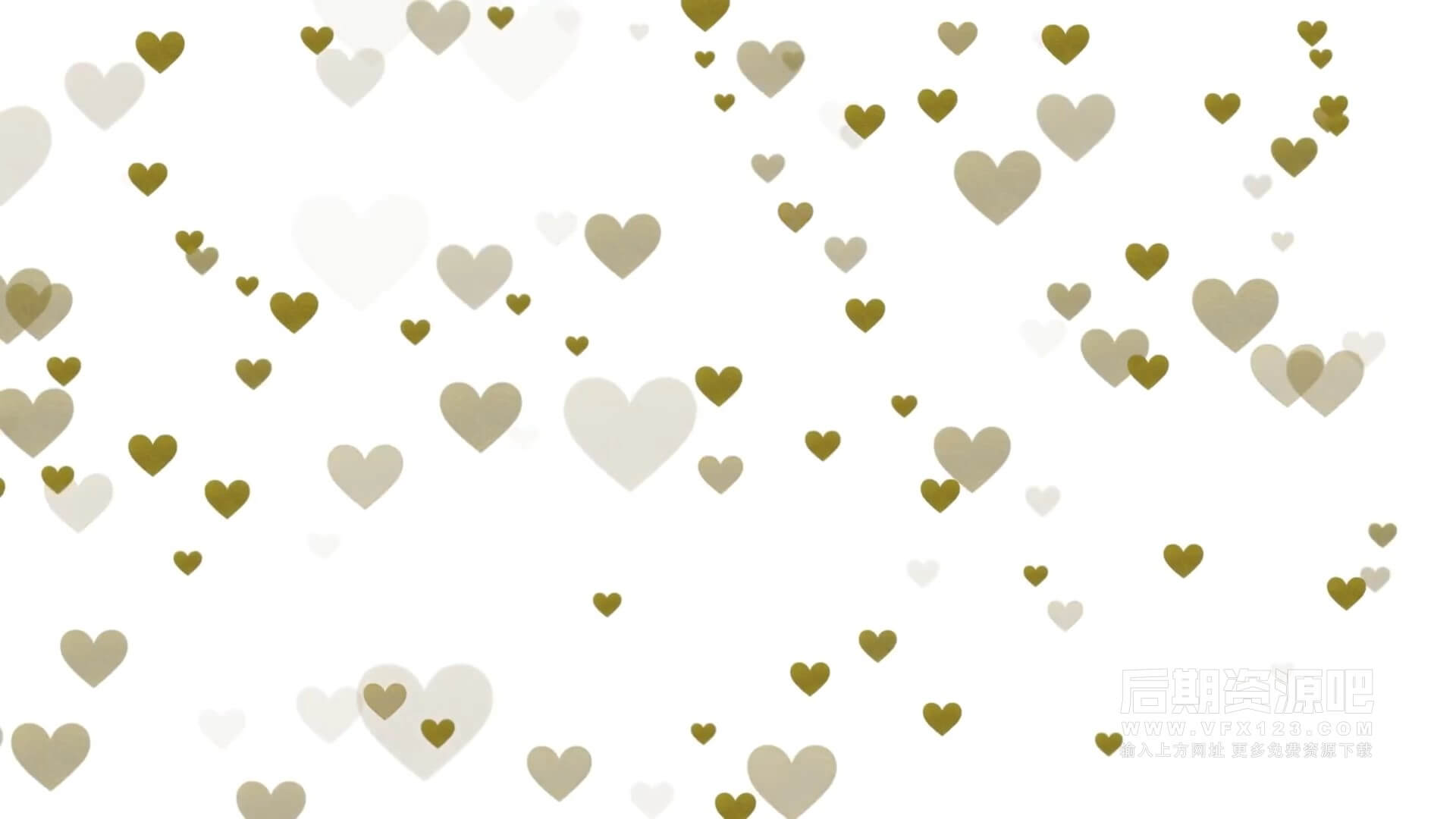 fcpx插件 10种金色纹理标题桃心背景标签等 小清新Vlog常用素材