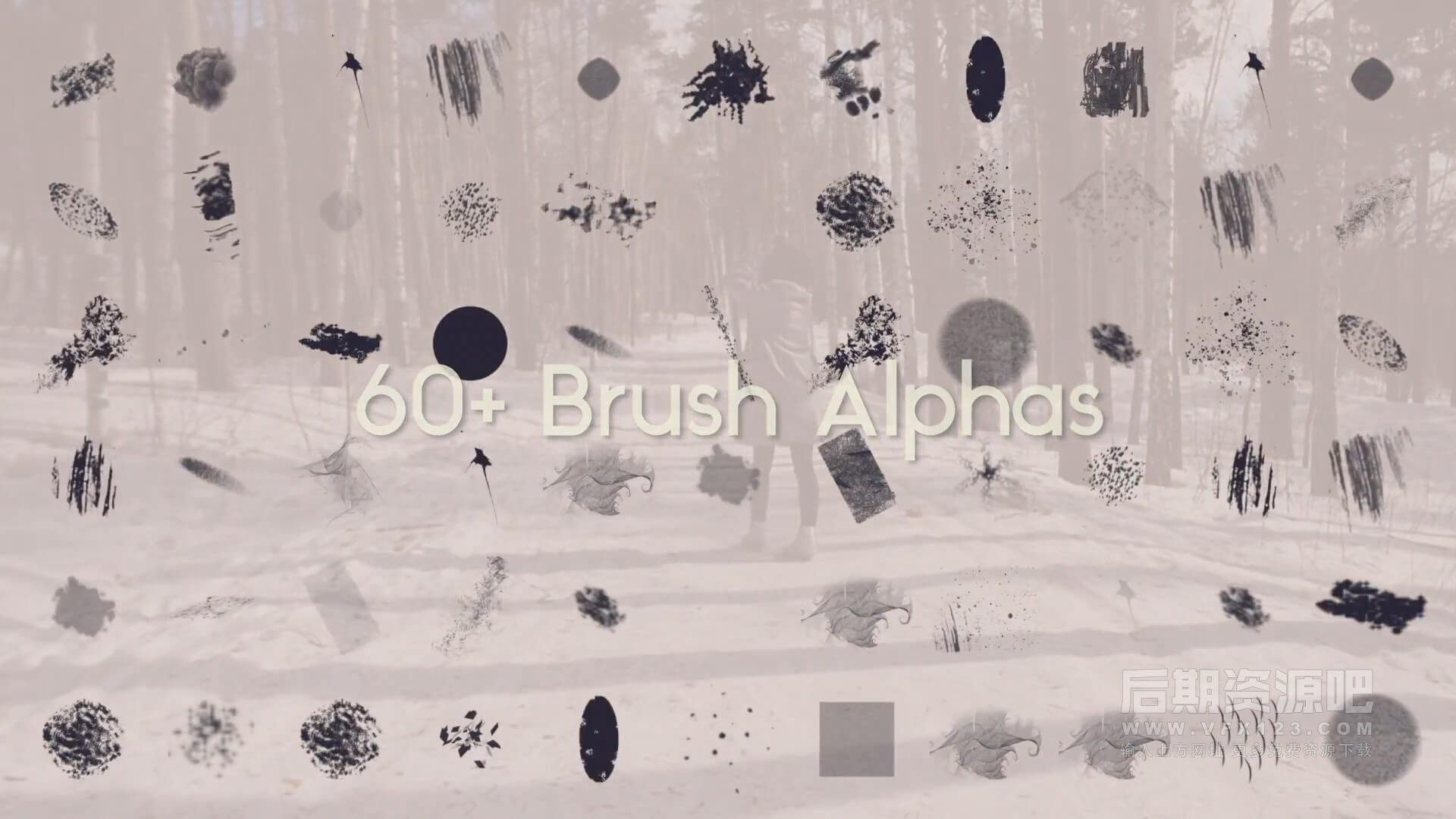 fcpx插件 66个笔刷样式描绘动画制作工具 Brush Tool V2