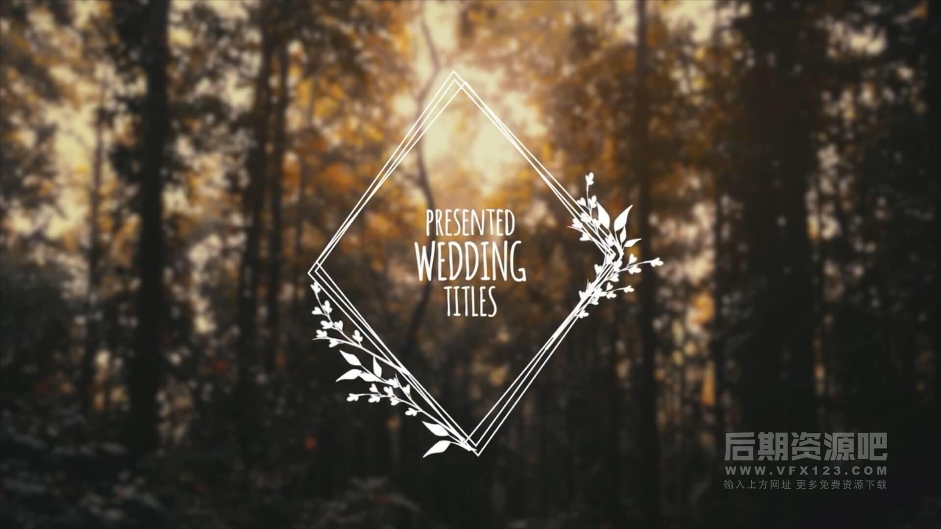 fcpx插件 5组花纹边框婚礼人名婚期标题动画模板 Wedding Titles